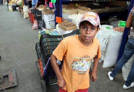 Erradicar el trabajo infantil una prioridad para la Red de Protección