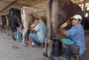 empleos ganadería hernando sánchez sierra